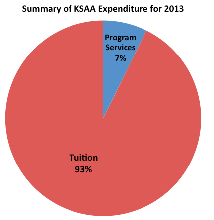 Summary of expenditure for 2013